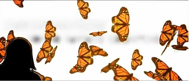 sogno farfalle quantiche film